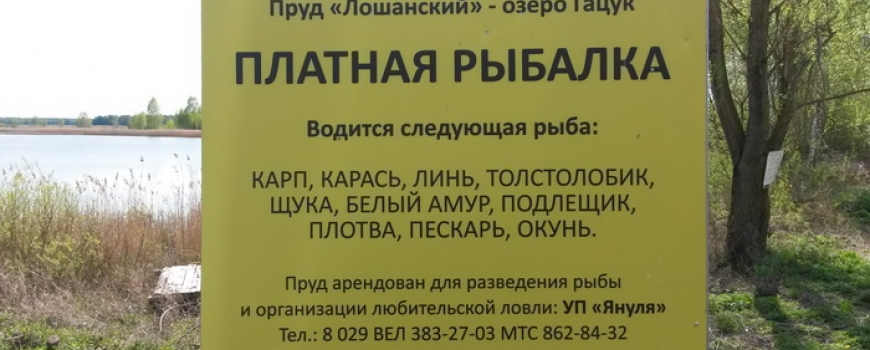 Список озёр где запрещена рыбалка